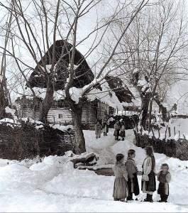 iarna-in-sat