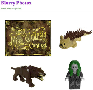Blurry Photos - Miss Cryptid Contest 2020 - Week 3 - June 6 Nandi Bear, Rusalka, Euroa Beast